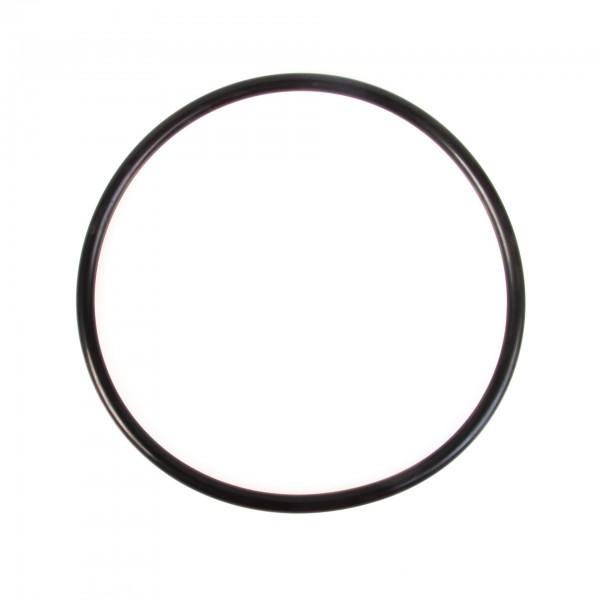 O-Ring P190