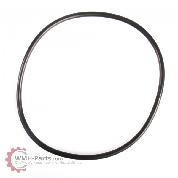 O-Ring P150