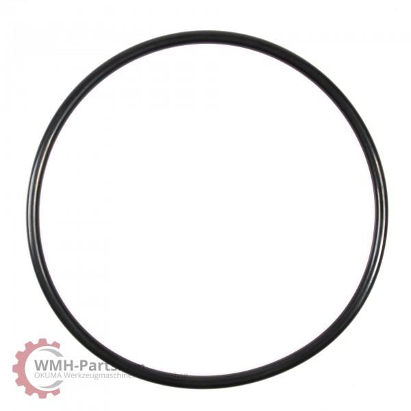 O-Ring P205