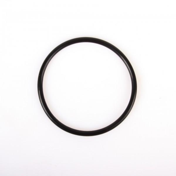 O-Ring P95