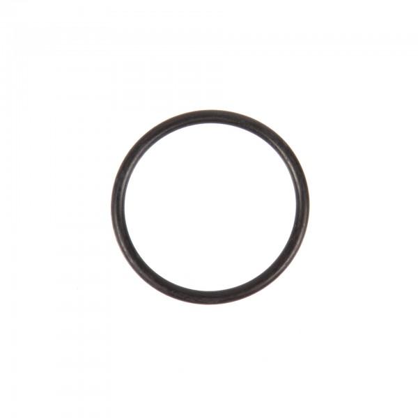 O-Ring S25