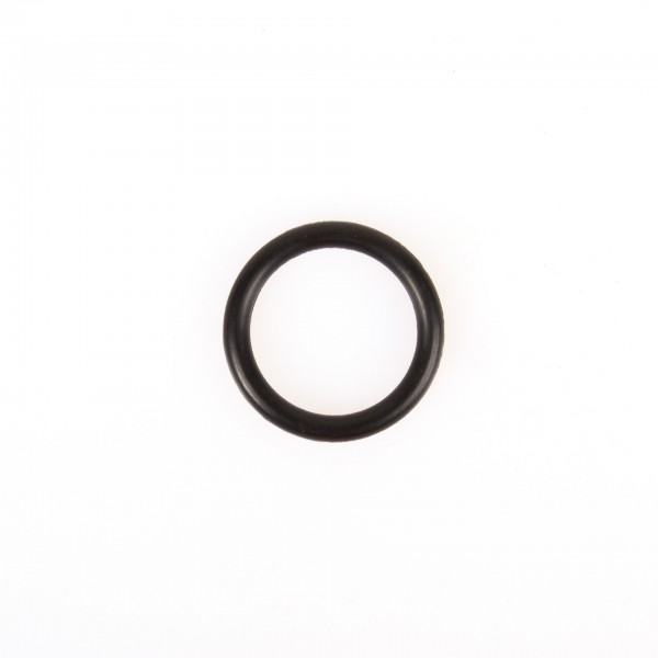 O-Ring P22A