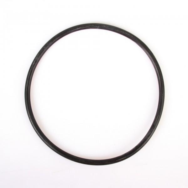 O-Ring P180