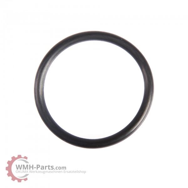 O-Ring P36